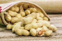 Shelled peanuts on jute fabric bag Stock Image