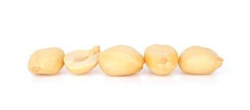 Shelled Peanuts on White Background Royalty Free Stock Photo