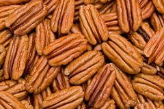 Shelled Pecans (Carya illinoinensis) Stock Photo