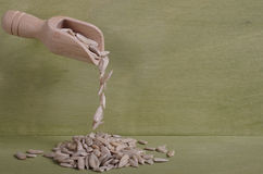 Shelled sunflower seeds falling from a small wooden spoon. Royalty Free Stock Photo