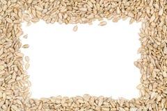 Shelled sunflower seeds frame  on white Stock Photos