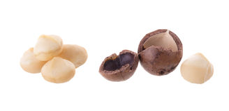 Shelled and unshelled Dried macadamia nut isolated on a white ba Royalty Free Stock Image
