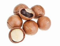 Shelled and unshelled macadamia nuts Royalty Free Stock Image