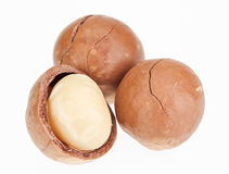 Shelled and unshelled macadamia nuts Royalty Free Stock Photo