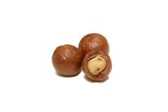Shelled and unshelled macadamia nuts. Isolated shelled and unshelled macadamia nuts Stock Photography