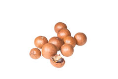 Shelled and unshelled macadamia nuts Stock Images