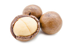 Shelled and unshelled macadamia nuts. Stock Photos