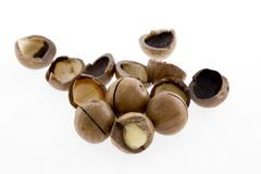Shelled and unshelled macadamia nuts on white background. Closeup Shelled and unshelled macadamia nuts on white background Royalty Free Stock Photo