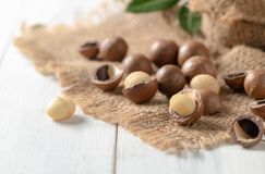 Shelled and unshelled macadamia nuts. On white wood background Royalty Free Stock Photography