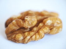 Shelled walnut seed Royalty Free Stock Photography