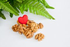 Shelled walnuts. Green leaves and a heart on white background Stock Images