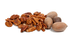 Shelled and whole pecans on white Stock Photography
