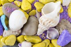 Shelles coloridos Imágenes de archivo libres de regalías