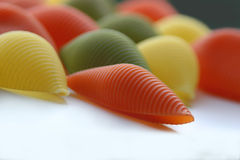 Shelles coloridos Foto de archivo libre de regalías