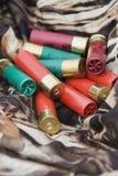 Shelles de escopeta. Foto de archivo