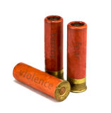 Shelles de escopeta aislados Imagen de archivo libre de regalías