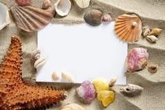 Shelles de la arena de las estrellas de mar del verano del espacio en blanco de Copyspace Foto de archivo libre de regalías