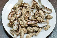 shelles de la tuerca Fotos de archivo