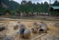 Shelles del caracol en el lago. Imagenes de archivo