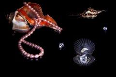 Shelles del mar El rosa gotea el collar, cristales fotografía de archivo libre de regalías