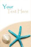 Shelles del mar en la arena Fondo de la playa del verano Visión superior Imágenes de archivo libres de regalías