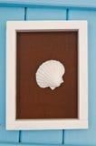 Shelles del mar en un marco Imagen de archivo libre de regalías