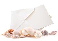 Shelles del mar y tarjeta en blanco Fotografía de archivo libre de regalías