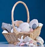 Shelles en cesta Foto de archivo libre de regalías