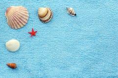 Shelles en una toalla Fotografía de archivo libre de regalías