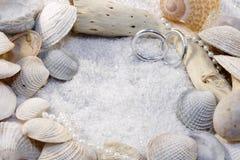 Shelles y anillos de bodas Fotos de archivo libres de regalías