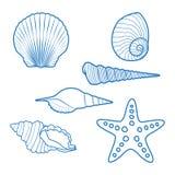 Shelles y estrellas de mar del mar stock de ilustración