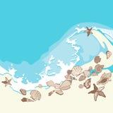 Shelles y estrellas de mar en fondo de la arena Imagen de archivo