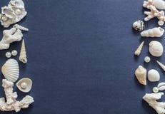 Shelles y perlas imágenes de archivo libres de regalías