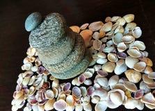 Shelles y piedras del mar Fotografía de archivo libre de regalías