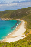 Shelley Beach in Australia Stock Images