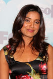 Shelley Conn Stock Photos