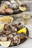 shellfish Zdjęcia Stock