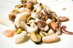 Shellfish Stock Images