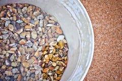 shellfish Obrazy Stock