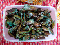 shellfish photo stock