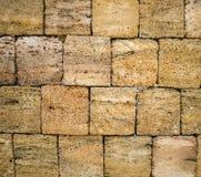 Shellfish bricks texture stock image