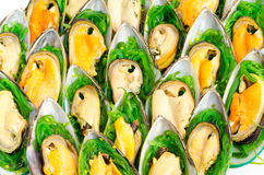 Shellfish buffet. A lot of shellfish snacks on buffet table, catering Royalty Free Stock Photo