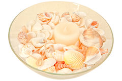 Shellfish with Candle decoration Stock Images