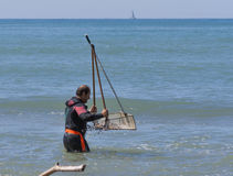 Shellfish catcher in Italy Stock Photography