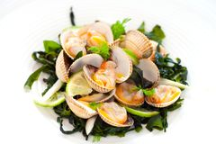 Shellfish Clam appetizer. Stock Photography