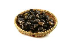 Shellfish Clams on basket Stock Image