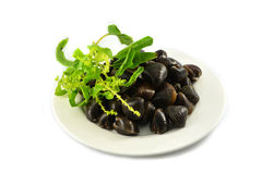 Shellfish Clams on plate. And sweet basil on white background Royalty Free Stock Image