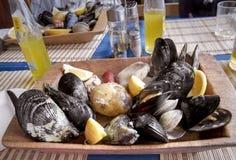 Shellfish curanto Royalty Free Stock Photo