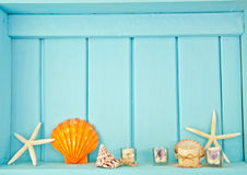 Shellfish decoration of the sea Stock Photo
