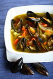Shellfish in the dressing Royalty Free Stock Photo